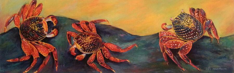 Coastal Art by James Melvin, Crabbin Around
