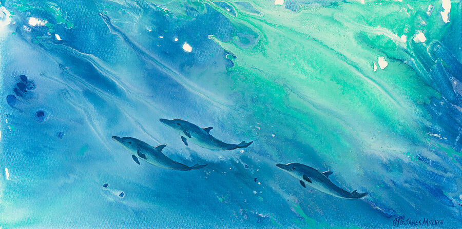Coastal Art by James Melvin, Dolphin Trio