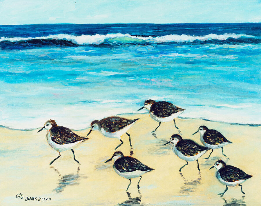 Coastal Art by James Melvin, Fast Feet
