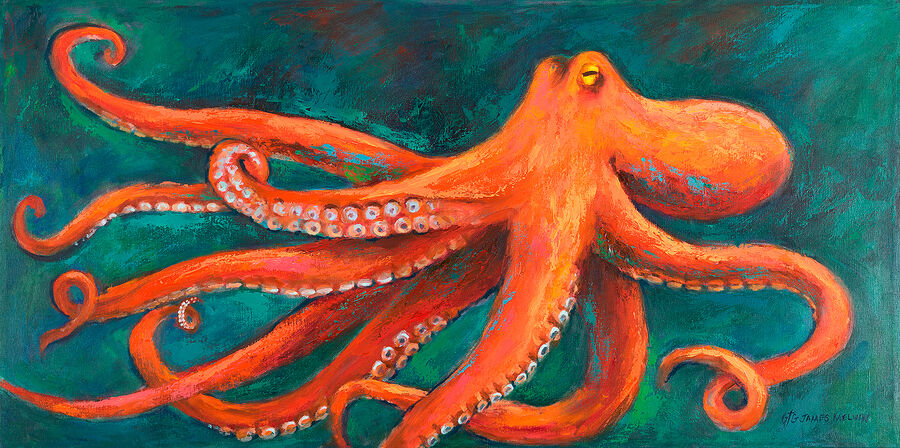 Coastal Art by James Melvin, Octopus