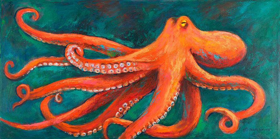 Coastal Art by James Melvin, Octopus