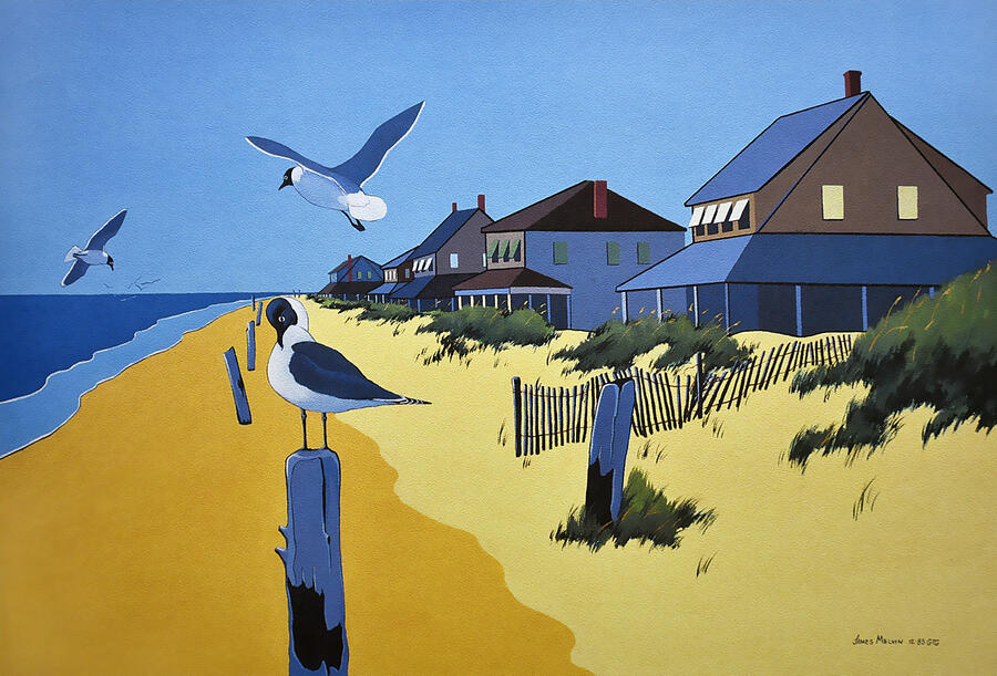 Coastal Art by James Melvin, Outer Banks Nc