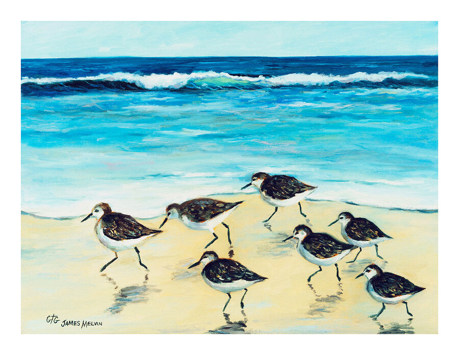Coastal Art Notecard Fast Feet