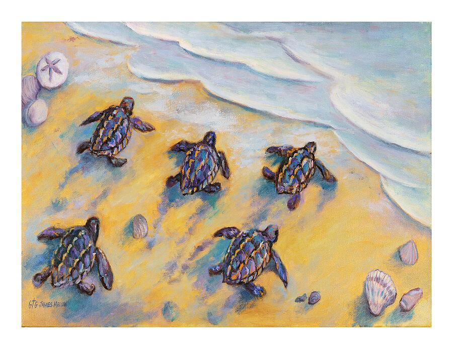 Coastal Art Notecard Lifes Journey