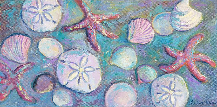 James Melvin, Obx Sand Dollars Stars Shells